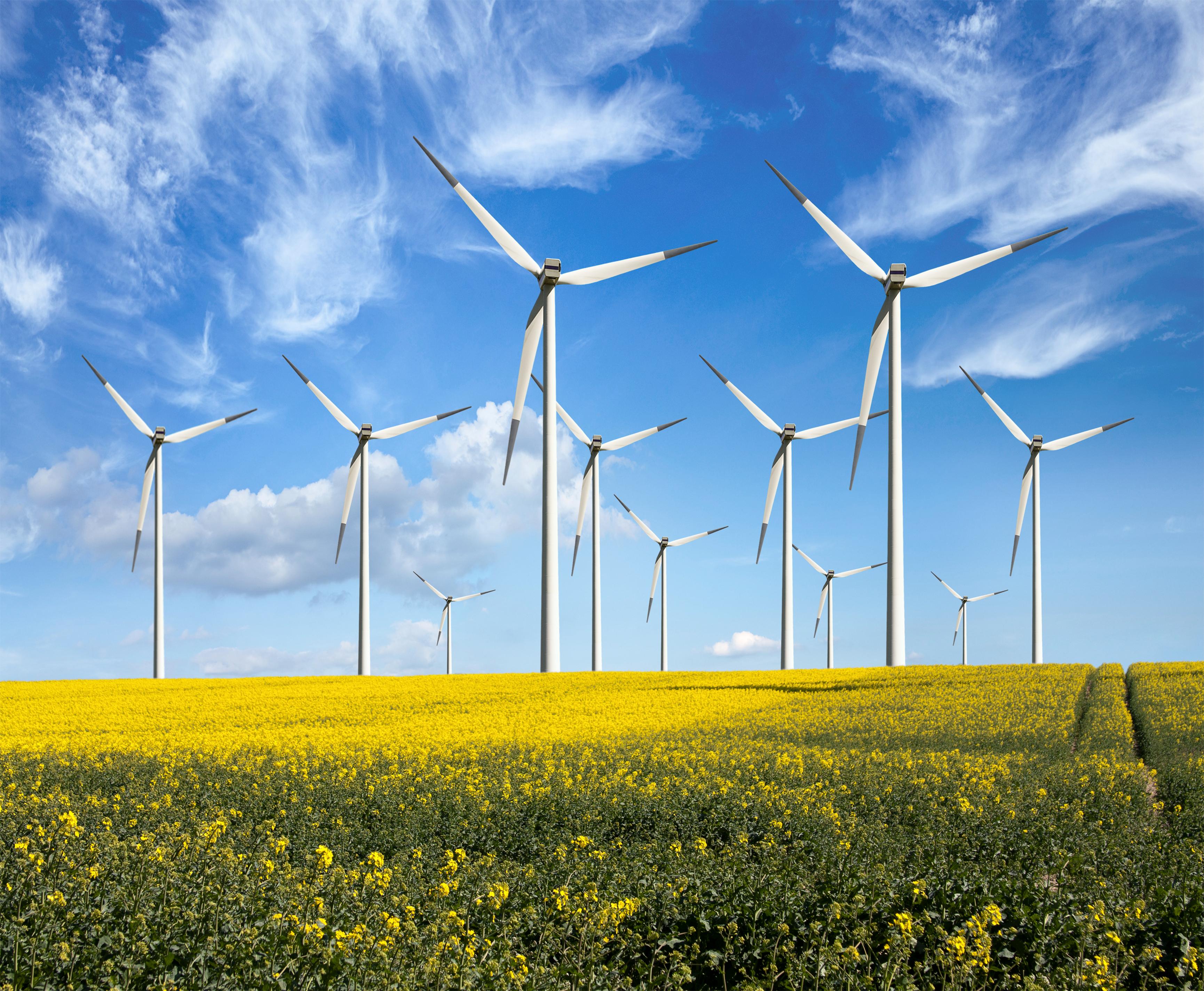 delaware  dottorato finanziato con una pala eolica